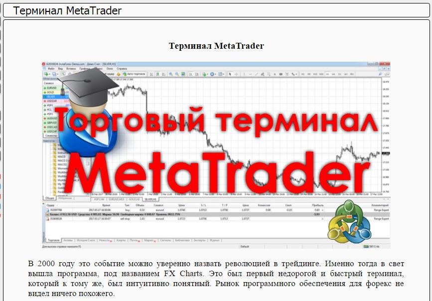 Статья на тему «Терминал MetaTrader»